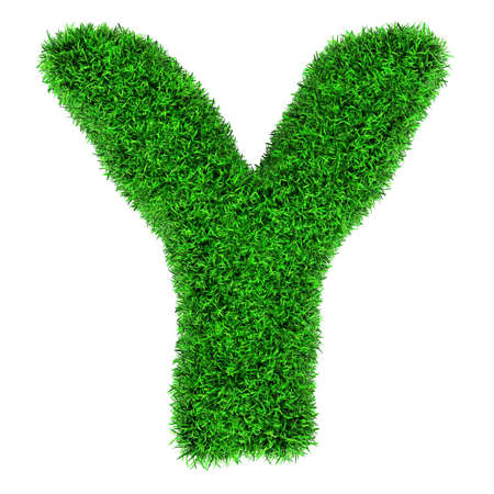Letter Y, made of grass isolated on white background. photo