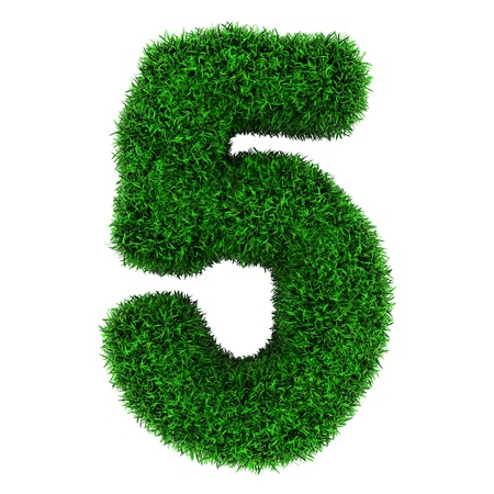 Number 5, made of grass isolated on white background. photo