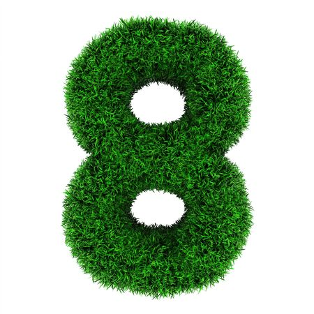 Number 8, made of grass isolated on white background. photo