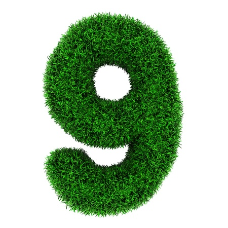 Number 9, made of grass isolated on white background. photo
