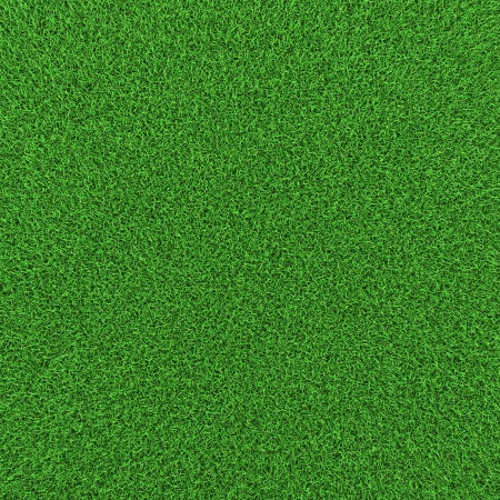 Grünes Gras Hintergrund Textur, hohe Auflösung 3d render. Standard-Bild - 18441346