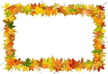 Autumn maple leaves falling frame, isolated on white background.