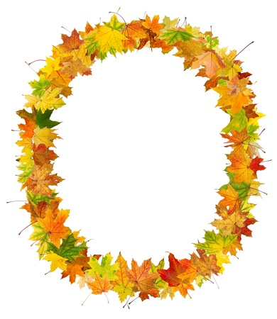 Autumn maple leaves frame in circle shape, isolated on white background. photo