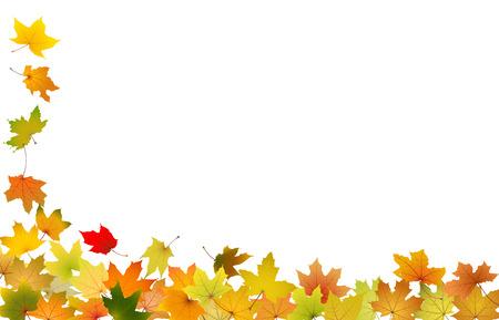 Falling autumn leaves, vector illustration