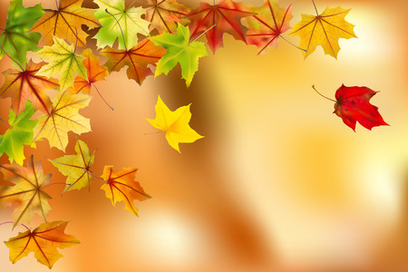 freefall: Maple autumn leaves falling down on natural background, vector illustration  Illustration