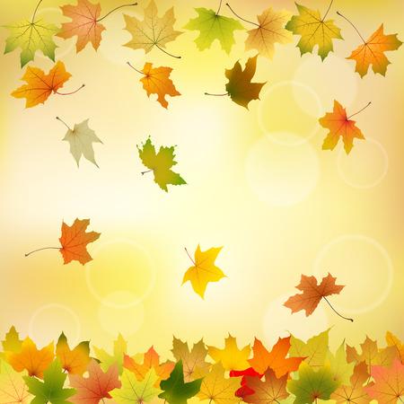 hojas de oto�o cayendo: Hojas de arce del oto�o cayendo en el fondo natural, ilustraci�n vectorial Vectores