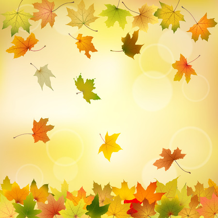 withering: Maple autumn leaves falling down on natural background, vector illustration  Illustration