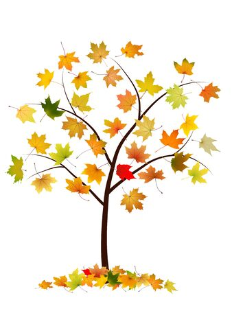 withering: Autumn tree with maple leaves, vector illustration