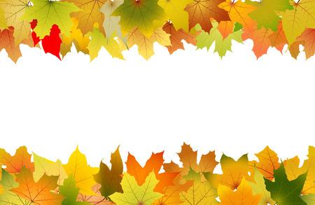 Patrón transparente horizontal de hojas de otoño, ilustración vectorial.