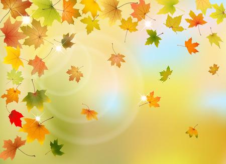hojas de oto�o cayendo: Maple hojas de oto�o cayendo en el fondo natural, ilustraci�n vectorial.
