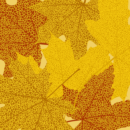 withering: Dry autumn maple leaves background, vector illustration.
