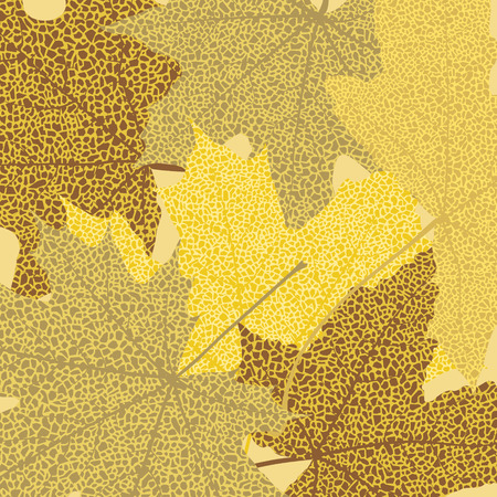 Dry autumn maple leaves background, vector illustration. Vector