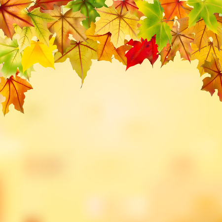 Maple autumn leaves falling down on natural background, vector illustration. Vector