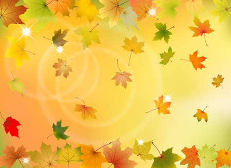 freefall: Maple autumn leaves falling down on natural background, vector illustration. Illustration