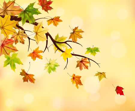 withering: Branch with autumn maple leaves on natural background, vector illustration. Illustration