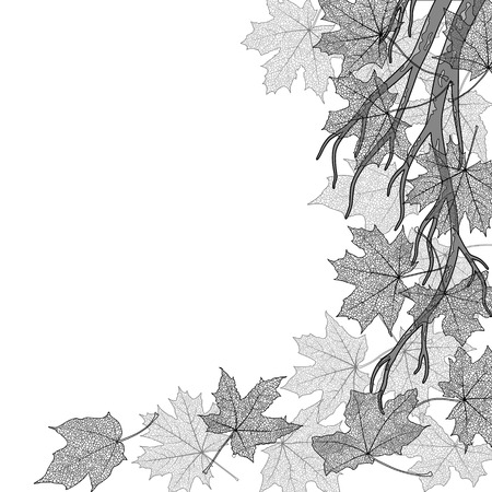 withering: Autumn branch with dry maple leaves silhouettes background, vector illustration. Illustration