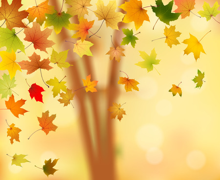 withering: Maple autumn leaves falling down on natural background, vector illustration. Illustration