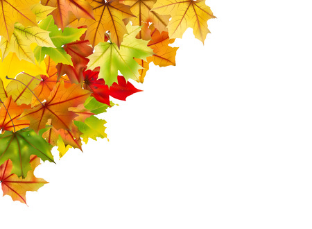 Beautiful autumn frame isolated in white, vector illustration. Vector