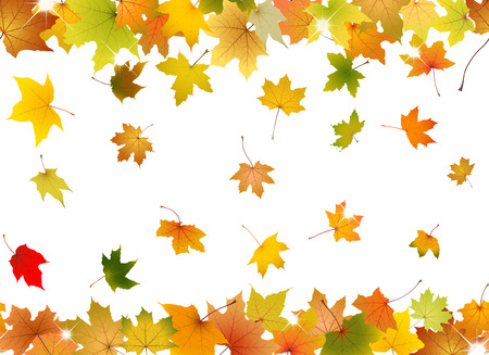 Horizontal seamless pattern of autumn leaves Vector