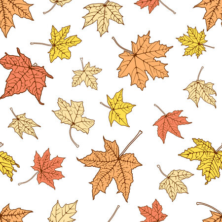 Seamless background of autumn color leaves, vector illustration. Vector