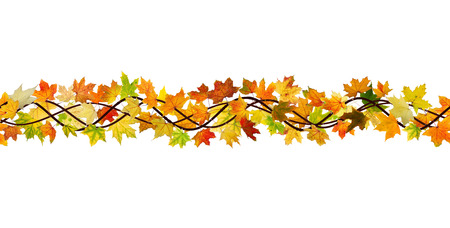 Horizontal seamless pattern of branch autumn maple leaves on white background.