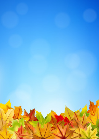 withering: Maple autumn leaves on blue sky background Illustration