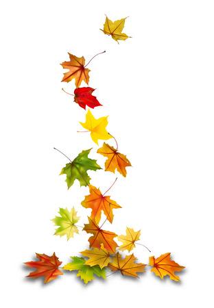 hojas de oto�o cayendo: Arce oto�o deja caer al suelo, ilustraci�n vectorial. Vectores