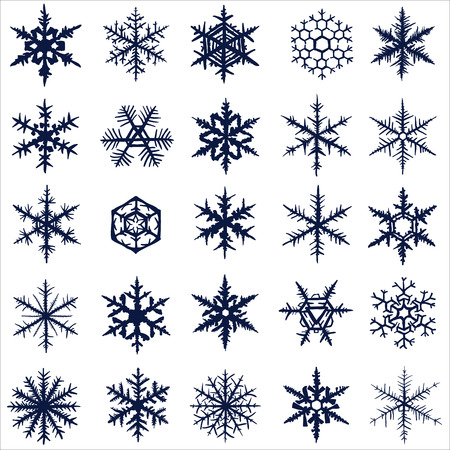 Collection of various vector hand-drawn snowflakes. photo