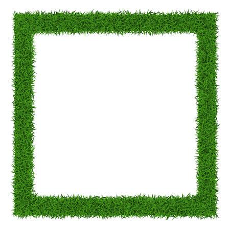 Cadre de l'herbe carré avec copie espace sur fond blanc, illustration vectorielle. Banque d'images - 37628122