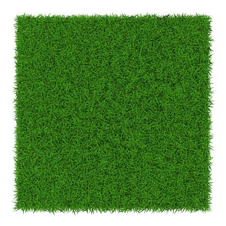 正方形の緑の草のバナー、ベクトル イラスト。  イラスト・ベクター素材