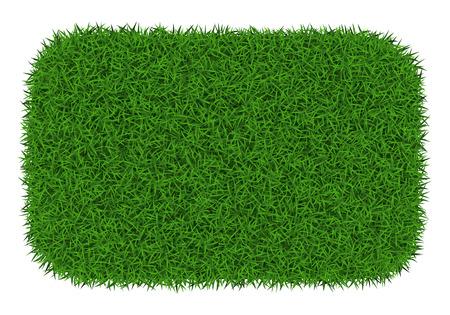 Rectangle green grass banner, vector illustration.