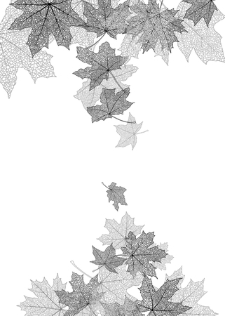 leaves frame: Dry autumn maple leaves silhouettes falling background, vector illustration. Illustration