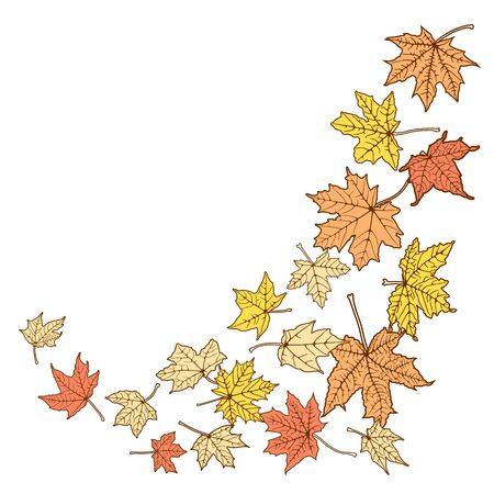 withering: Background from falling autumn color leaves, vector illustration. Illustration