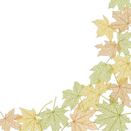 withering: Dry autumn maple leaves silhouettes banner, vector illustration.