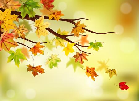 fondo natural: Rama con hojas de oto�o de arce en el fondo natural, ilustraci�n vectorial. Vectores