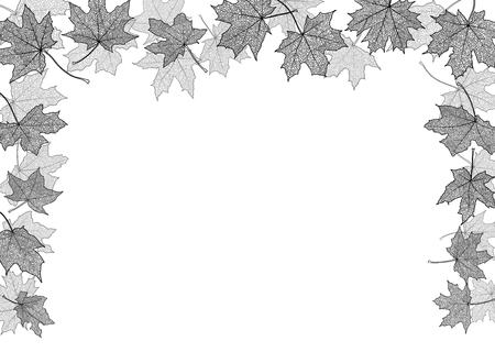 elementos: Arce otoño hojas secas de siluetas frontera, ilustración vectorial.