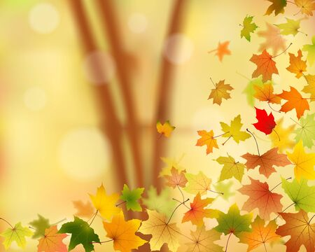 leaves falling: Autumn maple leaves falling down on natural background, vector illustration.