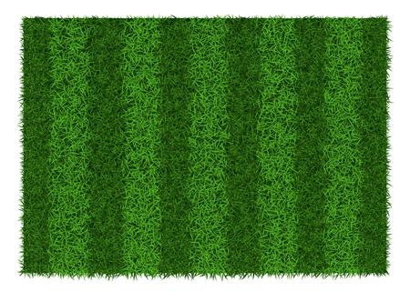 Green grass striped football field, vector illustration. Illustration