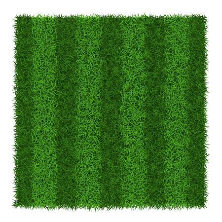 Green grass striped soccer field, vector illustration. Illustration