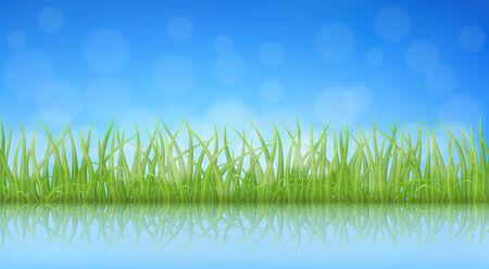 green fields: High quality green grass illustration.