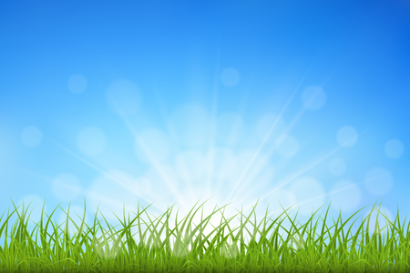 Green grass against blue sky sunbeams and bokeh background, vector illustration. Çizim