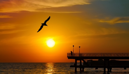 Beautiful sunset over the  sea with seagull on foreground and people silhouettes on pier photo