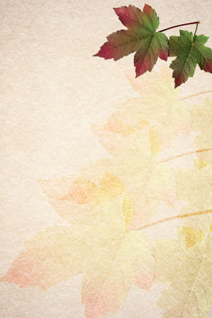 Old paper autumn leaves background with copyspace  Vertical orientation