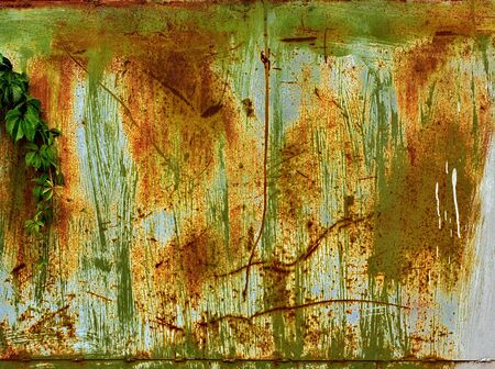 Old metal  surface covered with several peeling layers of paint photo