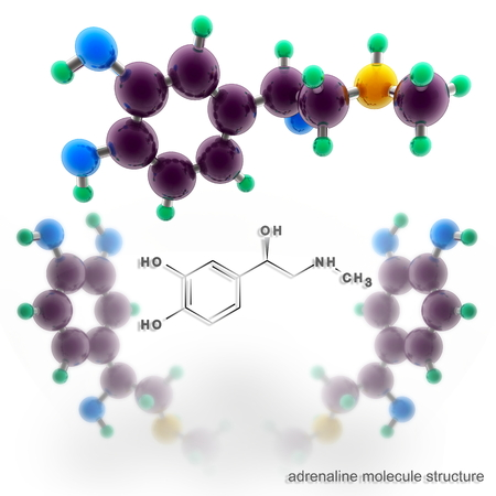 Adrenalin molecule structure. Three dimensional model render Stock Photo