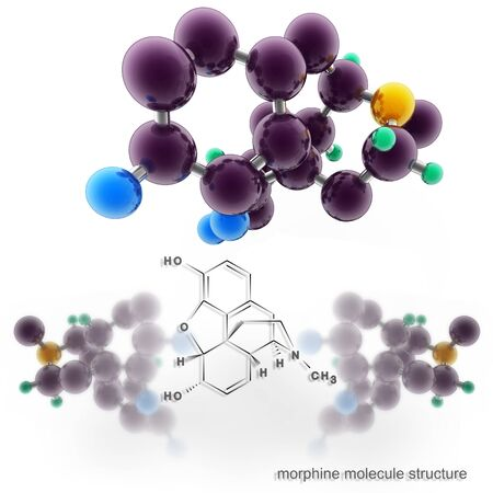 morphine: Morphine molecule structure. Three dimensional model render