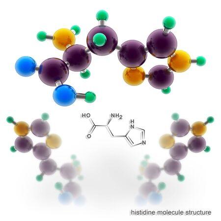 Histidine molecule structure. Three dimensional model render Stock Photo