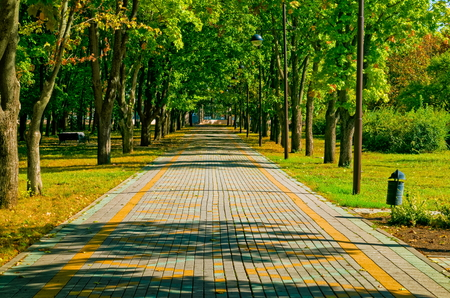 straight path: straight path with sense of perspective in a park