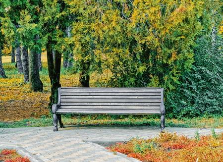 old garden bench in an autumn park