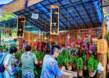 ASAKUSA, JAPAN - JULY 09, 2012 : People at souvenir shop near the Sensoji Temple during Hozuki Ichi, Chinese Lantern Plant Fair